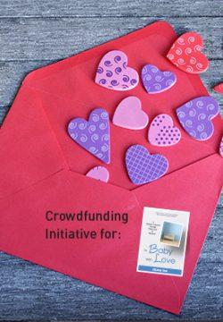 crowdfunding-Small